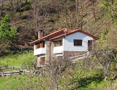 Rehabilitación de vivienda y taller de diseño en Villar de Casomera